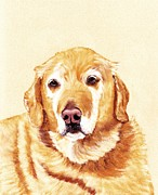 Retriever Pastels - Good Old Friend by Anastasiya Malakhova