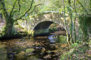 Humpback Digital Art Framed Prints - Goodameavy Bridge Dartmoor Framed Print by Donald Davis