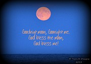 Terri K Designs - Goodnight Moon