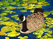 Geese Paintings - Goose by Denise Pittman