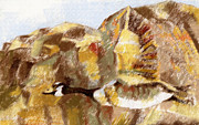 Canadian Geese Pastels - Goose flying  by Richard Gage
