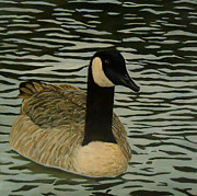 Geese Paintings - Goose painting - Simms Lake Goose by Katie Phillips