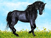 Adriane  J - Gorgeous Black Horse