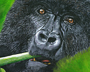 Photorealistic Painting Posters - Gorilla Poster by Lovejoy Creations