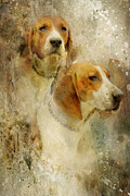 Hounds Originals - Goshen Hounds by Lyndsey Warren