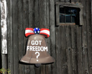Window Signs Art - Got Freedom by Karol  Livote