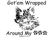 Wrapped Around Framed Prints - Gotem Wrapped Around My Paw Framed Print by Robyn Stacey