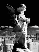 Gothicolors Donna Snyder - Gothic Angel