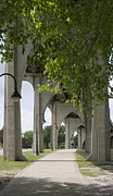 Waccamaw Posters - Gothic Arches Supporting the Waccamaw Bridge Poster by MM Anderson