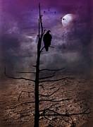 Andrea Kollo - Gothic Dream