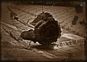 Neurotic Images Photography Prints - Gothic Rose Antique Sepia Print by Chalet Roome-Rigdon