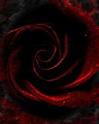 Goth Art Prints - Gothic Rose Print by Mimulux patricia no