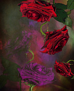 Prickly Rose Posters - Gothic Poster by Wobblymol Davis