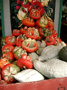 Harvest Time Prints - Gourds piled high Print by Joyce Gebauer