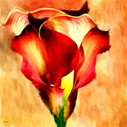 Calla Lily Digital Art Posters - Grace Of Red Poster by Lourry Legarde