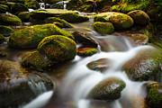 Keith Allen - Graceful Flows