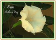 Joyce Dickens - Graceful Moonflower - Happy Mother