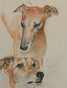 Sight Hound Originals - Graciously Greyhound by Cori Solomon
