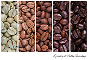 Restaurant Prints - Grades of coffee roasting Print by Jane Rix