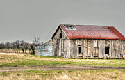 Country Dirt Roads Prints - Graffiti Barn Print by Lisa Moore