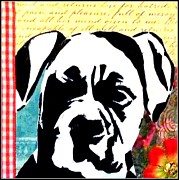 Boxer Mixed Media Metal Prints - Graffiti Boxer Metal Print by Ashley Reign