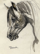 Horse Drawings - Grafik polish arabian horse ink drawing by Angel  Tarantella