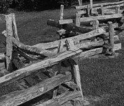 Split Rail Fence Photos - Grampas Fence by Annette Allman