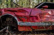 Wrecked Cars Prints - Gran Torino Print by Debra and Dave Vanderlaan