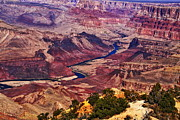 Grand Canyon State Prints - Grand Canyon - Arizona Print by Aidan Moran