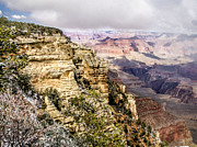 Arizonia Photos - Grand Canyon 3 by Leroy McLaughlin