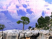 Grand Canyon 73 Print by Will Borden