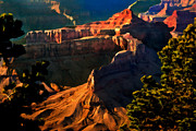 Point Park Mixed Media Posters - Grand Canyon at Sunset Poster by Nadine and Bob Johnston