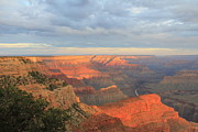 Wendy Delgado - Grand Canyon Color