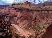 Grand Canyon Colorado River Print by Nadine and Bob Johnston