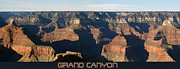 Canyons Posters - Grand Canyon Poster by Ernie Echols