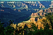 Landscapes Glass Art Prints - Grand Canyon  Golden Hour on Angel Point Print by Nadine and Bob Johnston