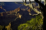 Oak Creek Digital Art Prints - Grand Canyon Hermit Point Sunset Print by Nadine and Bob Johnston