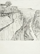 Grand Canyon Drawings - Grand Canyon by Jean Moule