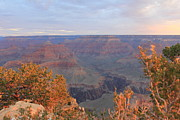 Wendy Delgado - Grand Canyon Morning