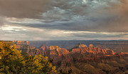 North Rim Framed Prints - Grand Canyon North Rim Sunset Framed Print by Sandra Bronstein