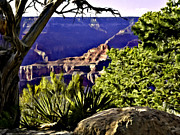 Wallpapers Framed Prints - Grand Canyon Painting Framed Print by Nadine and Bob Johnston