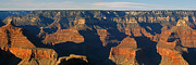 Canyons Photos - Grand Canyon panorama by Ernie Echols