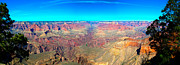 Sort Prints - Grand Canyon Panorama Print by Penny Lisowski