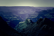 Destinations Digital Art Digital Art - Grand Canyon Soaring Bird of Prey Lomo by Shawn OBrien