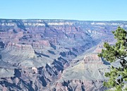 David Rizzo Metal Prints - Grand Canyon south Metal Print by David Rizzo