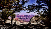 Ellen Lacey Prints - Grand Canyon Vista Print by Ellen Lacey