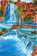 Barb Capeletti - Grand Canyon Waterfall