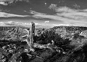 C H Apperson - Grand Canyon XXIII BW