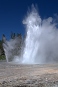 Travel Photography Prints - Grand Geyser Print by Brian Harig