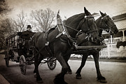 Carriage Horse Photos - Grand Hotel Taxi by Scott Hovind